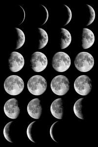 fases lluna